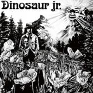 Dinosaur (アナログレコード)