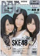 Magazine (Book)/Artist File Big One Girls Vol.7 Screen特編版