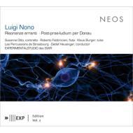 Risonanze Erranti, Post-prae-ludium Per Donau: Ensemble Experimental Etc