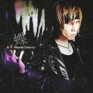 蝶 (+DVD)【数量限定盤】