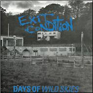 Days Of Wild Skies