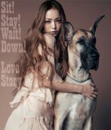 Sit!Stay!Wait!Down! / Love Story (+DVD)