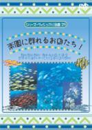 シリーズ ビジュアル図鑑 23: 楽園に群れるお魚たち