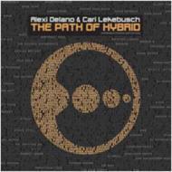 Path Of Hybrid