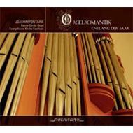 Joachim Fontaine: Orgelromantik Entlang Der Saar
