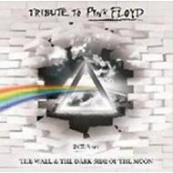 Tributo To Pink Floyd