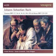 カンタータとモテット集 ベルニウス、レオンハルト、ブリュッヘン(4CD)