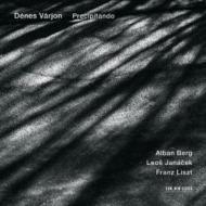 リスト:ピアノ・ソナタ、ベルク:ピアノ・ソナタ、ヤナーチェク:『霧の中で』 ヴァーリョン