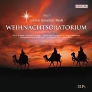 Weihnachts-oratorium: R.otto / Concerto Koln Ziesak Groop Pregardien Mertens