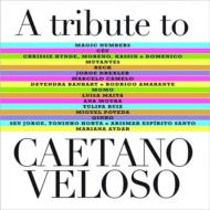 Tribute To Caetano Veloso