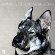 Animal Trainer Vs Bjorn Storig
