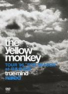 "TRUE MIND ""NAKED""-TOUR '96 ""FOR SEASON"" at 日本武道館-"