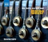 ピアノ・デュオのためのワルツ集〜リーム、ドヴォルザーク、カルク=エーレルト、レーガー エッカレ・ピアノ・デュオ
