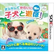 オシャレでかわいい! 子犬と遊ぼ! 海編