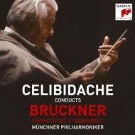 交響曲第4番『ロマンティック』 チェリビダッケ&ミュンヘン・フィル(1989)(2SACD)
