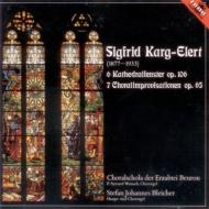 カルク=エーレルト(1877-1933)/Cathedral Windows Choral Improvisations: Bleicher(Org)