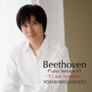 Piano Sonata, 30, 31, 32, : 近藤嘉宏
