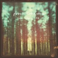 Fossil Collective/Tell Where I Lie