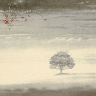 Wind And Wuthering: 静寂の嵐