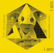 Doors Of Then / I Am Yours I Am You (Remixed By Anton Newcombe)