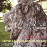 『ドン・キホーテ』、『死と変容』 ケーゲルライプツィヒ放送交響楽団、ジャンドロン(1968 ステレオ)