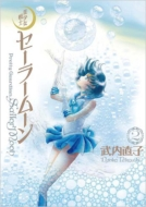 美少女戦士セーラームーン 完全版 2 KCピース