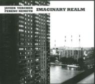 Imaginary Realm