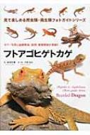 フトアゴヒゲトカゲ カラー写真と品種解説、飼育・繁殖情報が満載!! 見て楽しめる爬虫類・両生類フォトガイドシリーズ