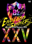 B'z LIVE-GYM Pleasure 2013 ENDLESS SUMMER -XXV BEST-【完全版】