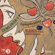 交響曲第1番、第2番 ブラビンズ&ウェールズ・ナショナル管弦楽団