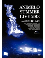 Animelo Summer Live 2013 -FLAG NINE-8.24 (DVD)