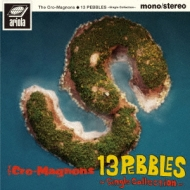 13 PEBBLES 〜Single Collection〜【完全生産限定盤】(アナログ盤)