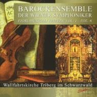 Fiori Musicali Triberg: Vso Baroque Ensemble
