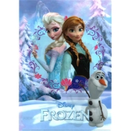 WポケットクリアファイルA アナと雪の女王
