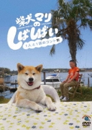 柴犬マリのしばしばい〜1人と1匹のコント集〜