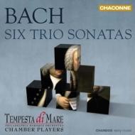 6つのトリオ・ソナタ(室内楽版) テンペスタ・ディ・マーレ