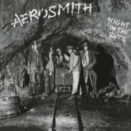 Night In The Ruts (180グラム重量盤)
