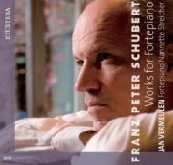 ピアノ作品集 ヤン・フェルミューレン(フォルテピアノ)(12CD)