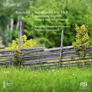 交響曲第1番、第2番、『ロザムンデ』序曲 、『アドラスト』からの葬送行進曲 ダウスゴー&スウェーデン室内管