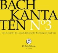 カンタータ集第3集〜第1、35、132番 ルドルフ・ルッツ&バッハ財団管弦楽団