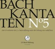 カンタータ集第5集〜第42、180、191番 ルドルフ・ルッツ&バッハ財団管弦楽団