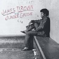 In The Jungle Groove (2枚組アナログレコード)