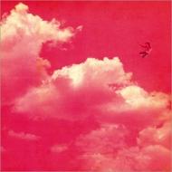 New Sky・Flight