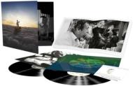 Endless River (2枚組/180グラム重量盤レコード)