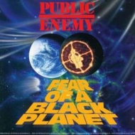 Fear Of A Black Planet (180グラム重量盤)
