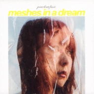 MESHES IN A DREAM