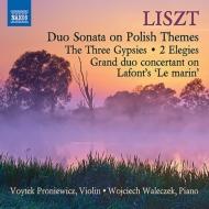 ヴァイオリンとピアノのための作品集 プロニエヴィチ、ヴァレチェク