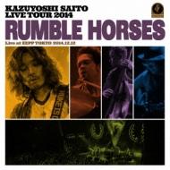 """KAZUYOSHI SAITO LIVE TOUR 2014 """"RUMBLE HORSES"""" Live at ZEPP TOKYO 2014.12.12 (2CD)【通常盤】"""