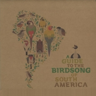 Guide To The Birdsong Of South America