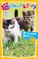 猫たちからのプレゼント 捨てネコたちを助けたい! 集英社みらい文庫